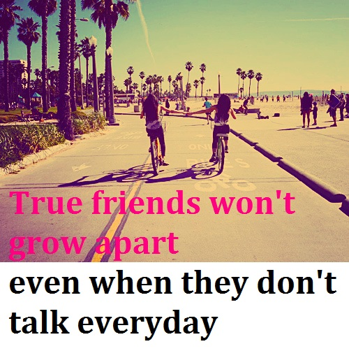 True friends ….